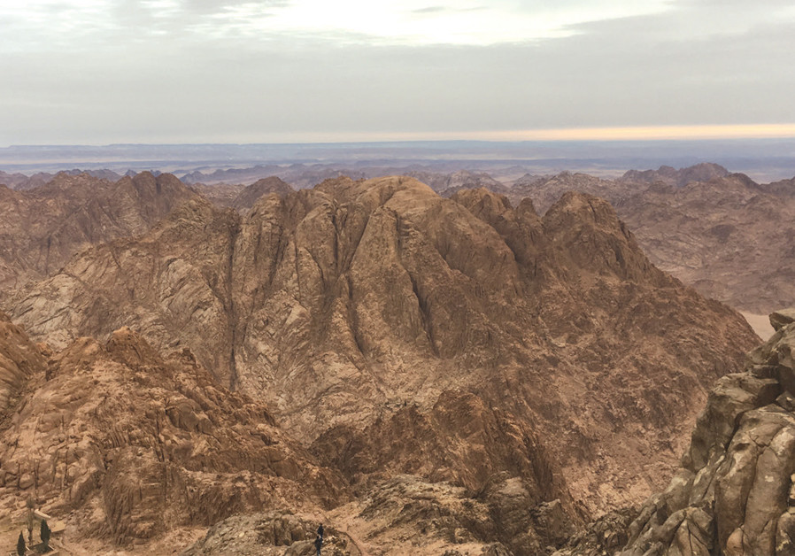 Sinai's Bedouins struggle to preserve their timeless way of life
