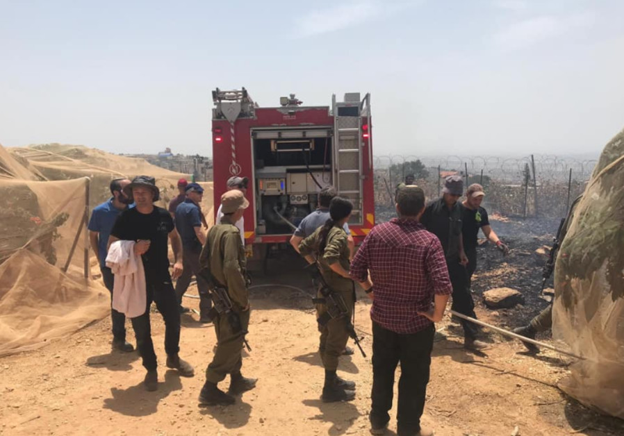 Vandals set fire to cherry tree orchard in the West Bank