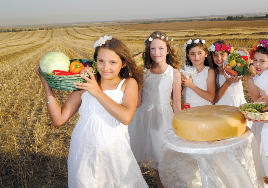 Cheesecake for the soul: Finding our perfect slice of Torah