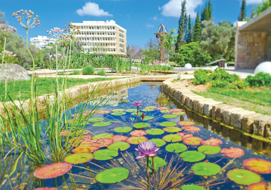 THE WEIZMANN Institute is 'one of the best' at finding smart, curious researchers and providing them with infrastructure, time and total freedom, notes Zajfman. (Credit: WEIZMANN INSTITUTE OF SCIENCE)