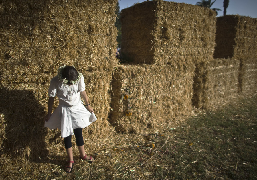 A girl stands next to bales of hay at the annual harvest festival in Kibbutz Degania Alef, northern