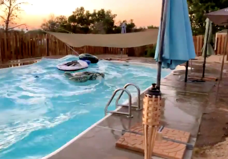 Waves in a swimming pool are pictured during the earthquake in Ridgecrest, California, U.S., July 5,