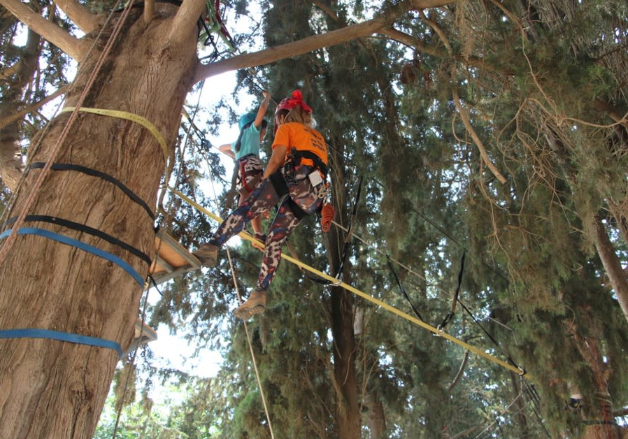 Special Needs Children Soar among the Treetops