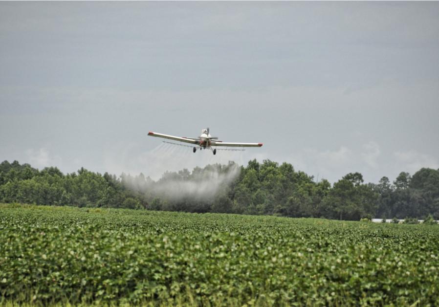 Plane releases herbicides over crops, illustrative