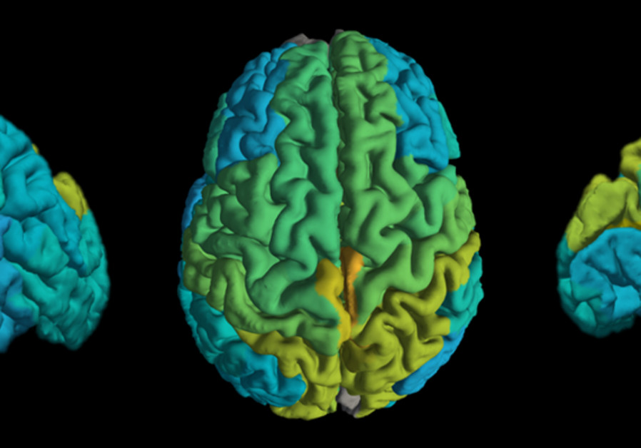 Bar-Ilan University study shows how our brain handles our own mortality