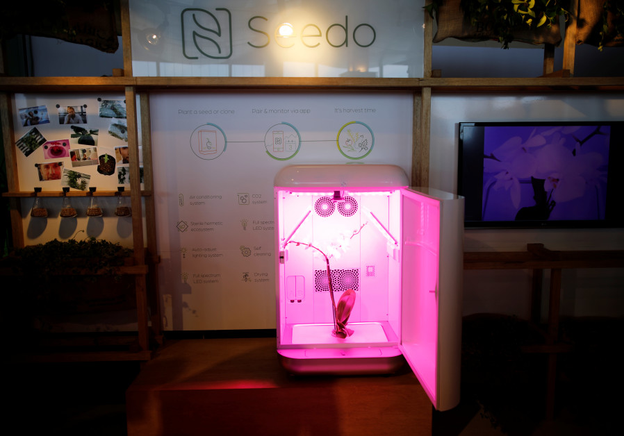 Israeli-made Seedo, home weed-growing machine, finishes first trial run