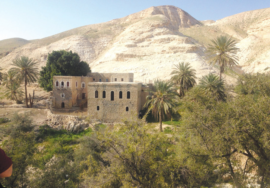Tour Israel: Discover Prat, a stream in the desert landscape