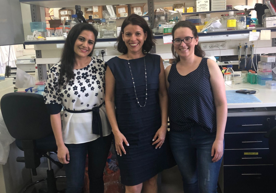 TAU research: Blocking inflammatory pathway could stop spread of cancer