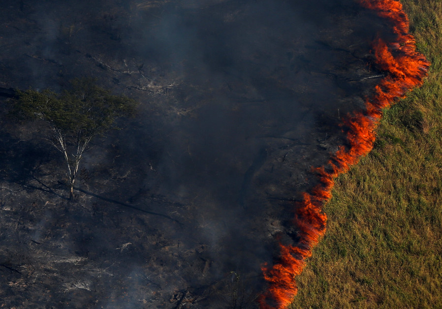 "Burning forest is seen during ""Operation Green Wave"" to combat illegal logging in Amazon rainforest"