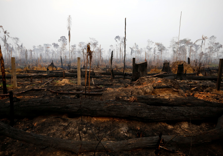 A tract of Amazon jungle is seen after a fire in Boca do Acre, Amazonas state, Brazil August 24, 201