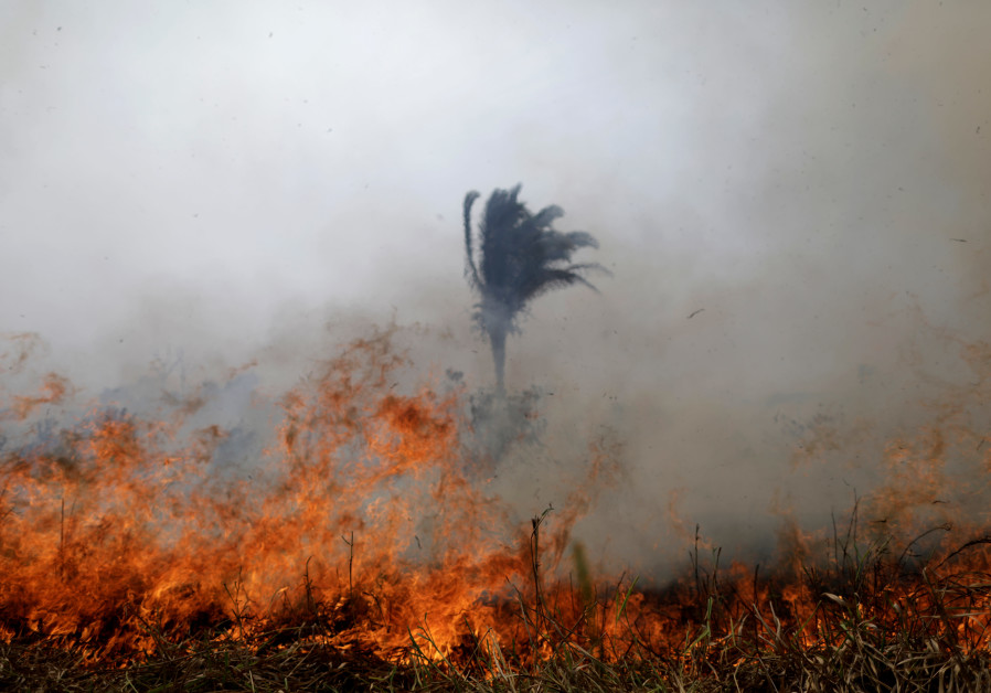 A tract of the Amazon jungle burns as it is cleared by loggers and farmers in Porto Velho, Brazil August 24, 2019 (UESLEI MARCELINO/REUTERS)