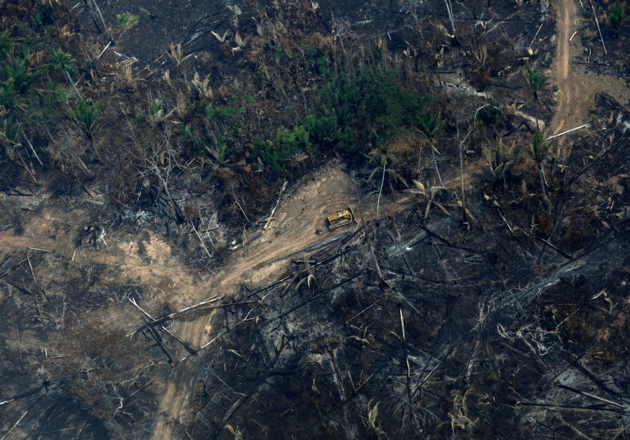 An aerial view of a deforested plot of the Amazon in Boca do Acre, Amazonas state, Brazil August 24, 2019 ( BRUNO KELLY/REUTERS)