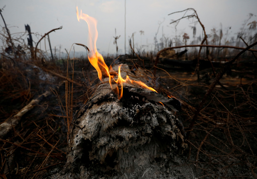 A tract of Amazon jungle is seen after a fire in Boca do Acre, Amazonas state, Brazil August 24, 2019 (BRUNO KELLY/REUTERS)