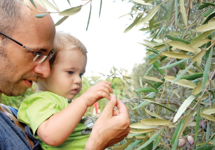 Rosh Hashanah: Festive, fresh fun