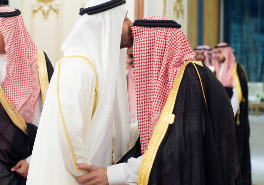 Abu Dhabi crown prince, Saudi official discuss military, defense matters
