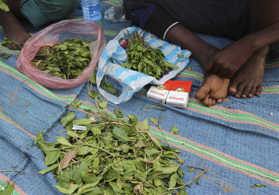 67 Israelis arrested overseas for khat-smuggling