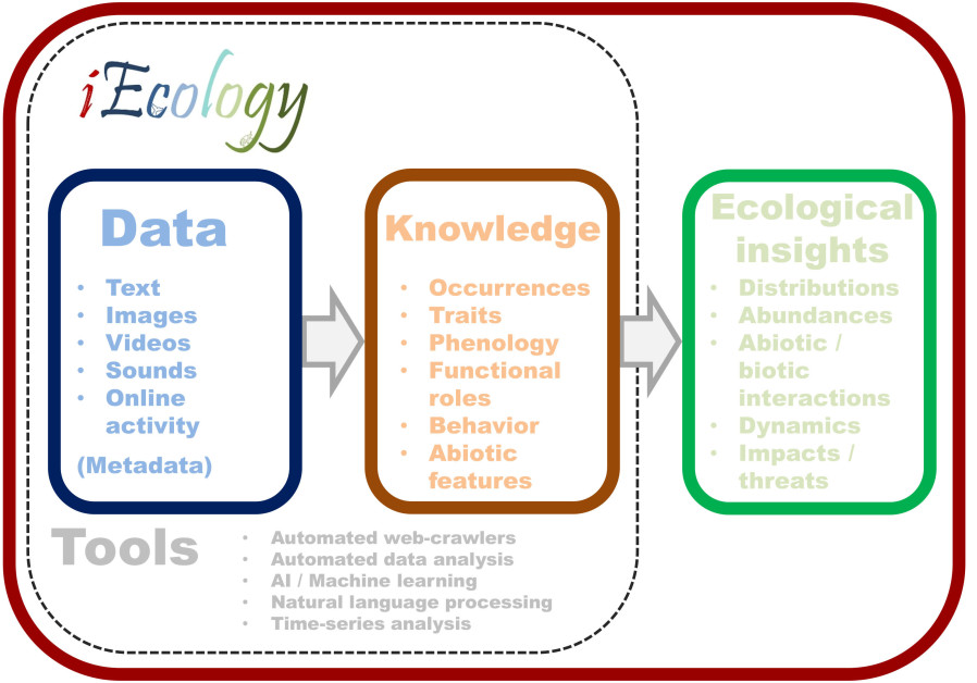 Conceptual representation of iEcology - showing how key data types can turn into knowledge of the natural world using a set of research tools, which in turn can provide novel ecological insights. (Credit: Ben Gurion University of the Negev)