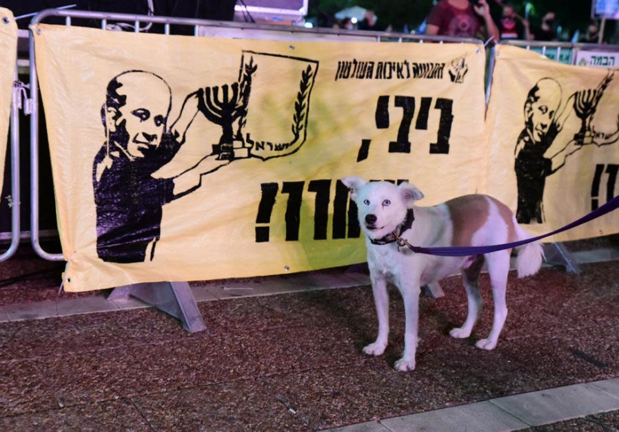 A dog stands by a poster from the Movement for Quality Government on October 24, 2020. (Photo credit: Avshalom Sassoni/Maariv)