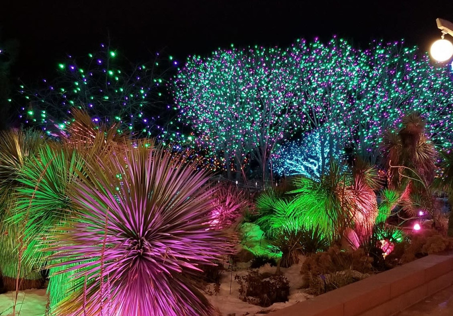 Jerusalem Botanical Garden Winter Lights Festival