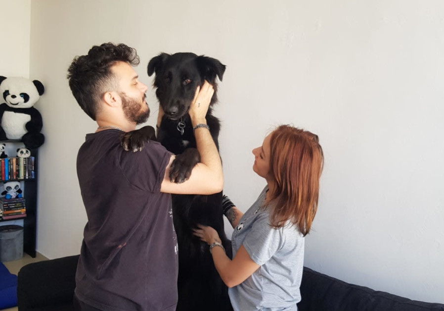Zion is seen at home with his owners, Shay and Vika. (Photo credit: SPCA Israel)