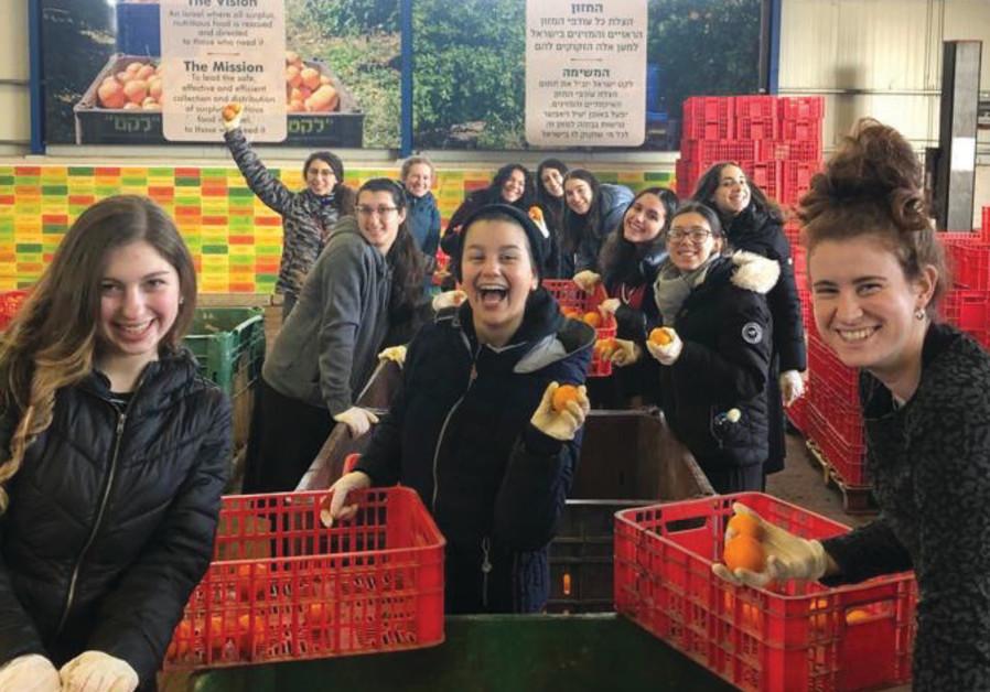 COHORT STUDENTS sort oranges for Leket.(Kedma)