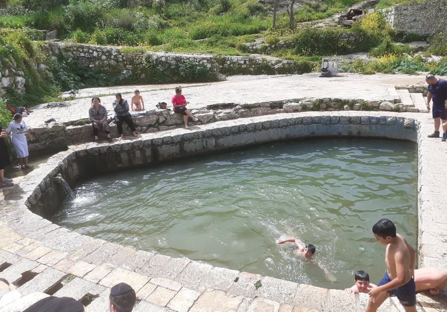 THE LIFTA SPRING is a popular swimming hole-cum-mikveh. (Gil Zohar)