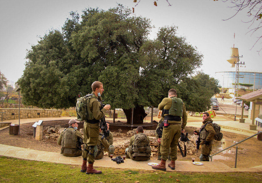 IDF SOLDIERS stop for lunch at the renovated compound of 'The Lone Oak Tree,' around a 700-year-old tree in Alon Shvut. (Photo credit: Gershon Elinson/Flash90)