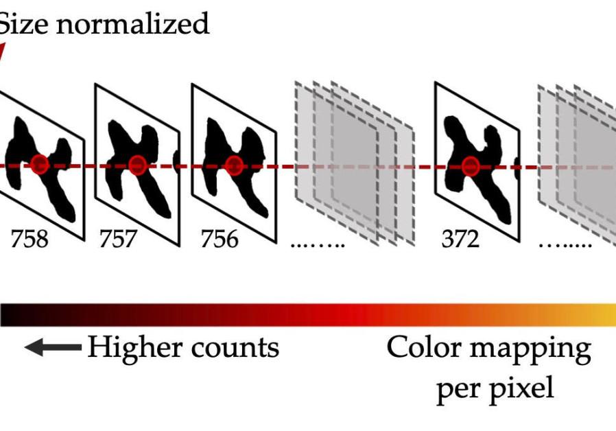 Ilustrasi tentang bagaimana peta panas dari bentuk karakter rata-rata yang dinormalisasi dibuat untuk setiap huruf. (Sumber: MARUF A. DHALI)