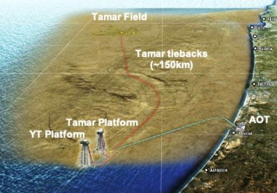 A map of the Tamar field (courtesy)