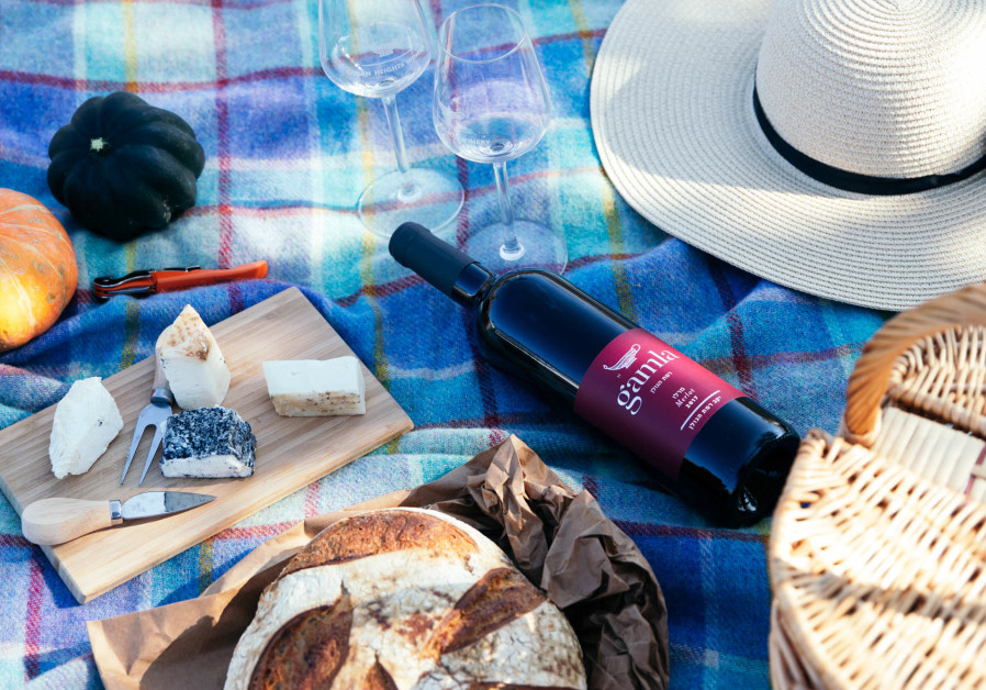 CHEESE AND wine on a picnic: The perfect way to celebrate Shavuot. Gamla is always good value.  (Golan Heights Winery)