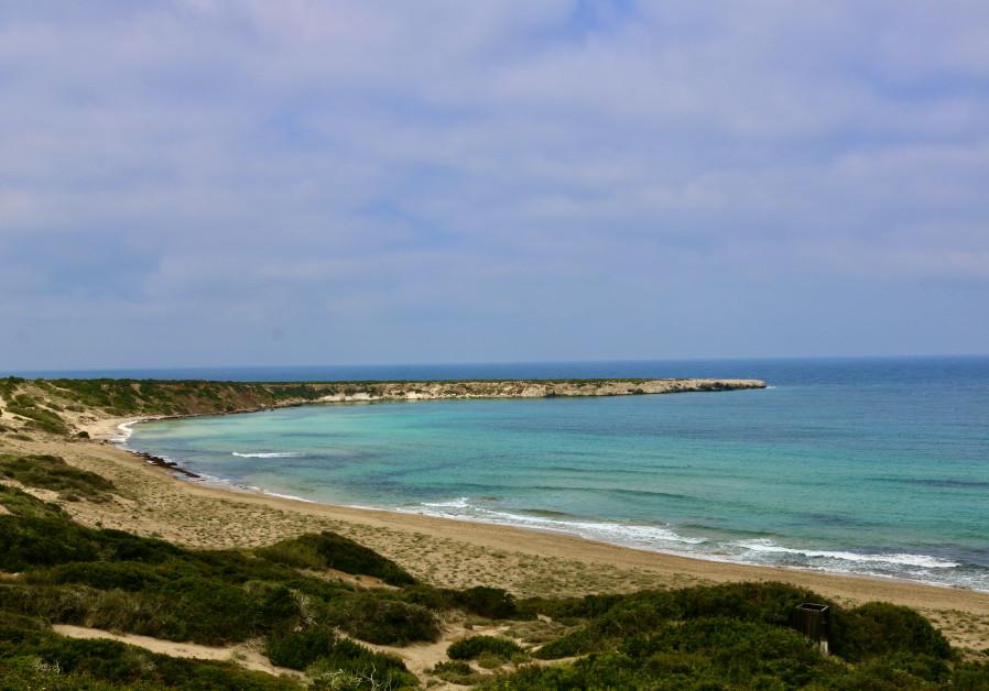 Lara Bay in Cyprus (Photo credit: Hadassah Brenner).