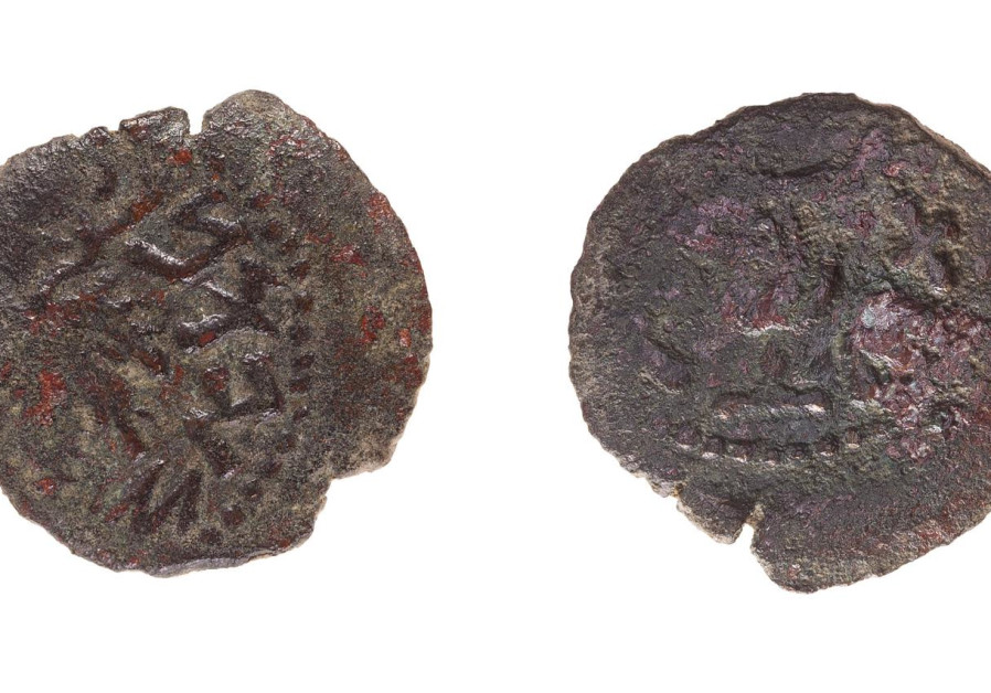 The 2,000-year-old coins that date back to the period of the Jewish revolts against the Romans, July 13, 2021. (Credit: TAL ROGOVSKY)