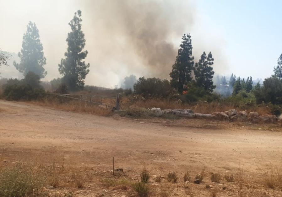 Un incendio boschivo si diffonde senza controllo nel centro di Israele durante un'ondata di caldo, 3 agosto 2021