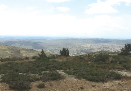 A view from Gush Etzion