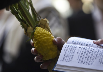 A Jewish worshipper holds the Four Species, used in rituals for the holiday of Sukkot which began la