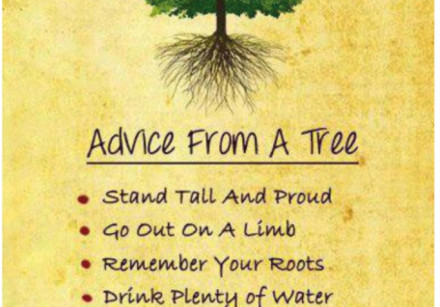 A page from the Haggadah titled 'Advice From a Tree'