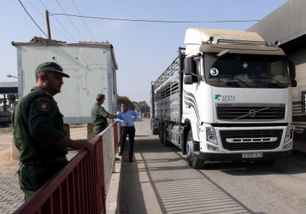 A truck carrying cattle arrives at Kerem Shalom crossing after it was reopened by Israel, in Rafah i