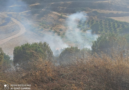 A fire near the settlement of Migdal Oz in Gush Etzion