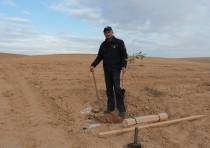 KKL-JNF forester plants a tree in Mishmar HaNegev Forest