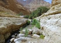 Arugot River
