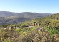 The Jerusalem hills, as seen from Saffron Grove in Sataf