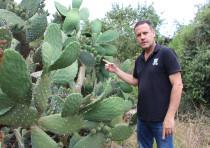 KKL-JNF Afforestation Division's director of forestry and professional development Aviv Eisenband