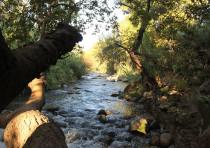 Snir Stream