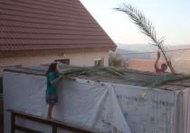 Building a sukkah in Ma'aleh Levona