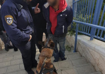 Burglar was caught red handed Jerusalem's Pisgat Ze'ev neighborhood.