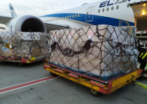 Tens of thousands of coronavirus tests and processing equipment arrived from China