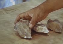 Flints found near Dimona, in the Negev, summer 2020