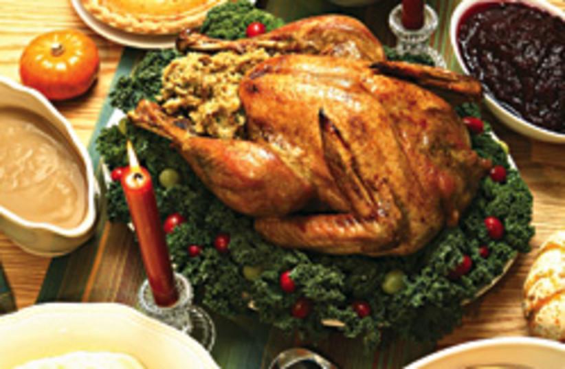 turkey 248.88 (photo credit: )