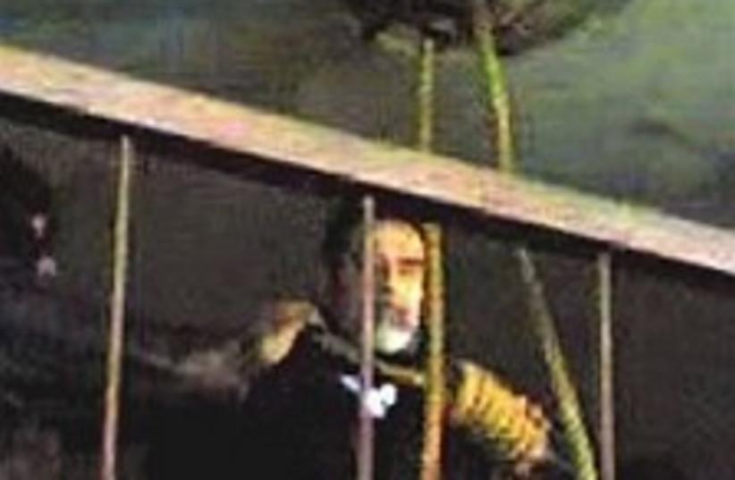 Saddam hangs 224.88 (photo credit: AP)