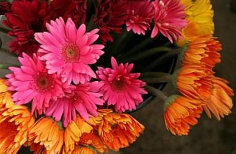 flowers 298.88 (photo credit: AP)